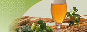 Gluten-free beer: A practical guide for your...
