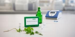 GEN-IAL® First-Yeast PCR Kit Untergärige Hefen (UG) / bottom-fermented yeast