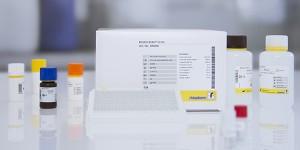 RIDASCREEN®FAST Gliadin sensitive