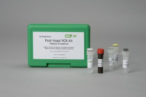 GEN-IAL® QuickGEN First-Yeast PCR Kit Dekkera bruxellensis