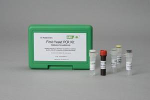 GEN-IAL® QuickGEN First-Yeast PCR Kit Dekkera bruxellensis