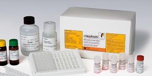 RIDASCREEN®FAST Gliadin