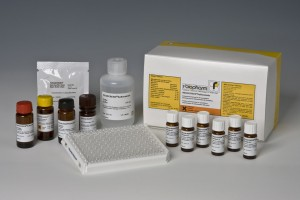 RIDASCREEN® Sulfonamide Elisa test kit